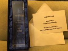 Ceremonia de entrega de premios WFA, 29-02-20. Best Picture Alex's Strip - Irene Zoe Alameda